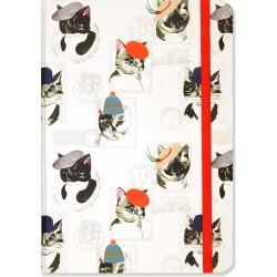 Cat's Journal